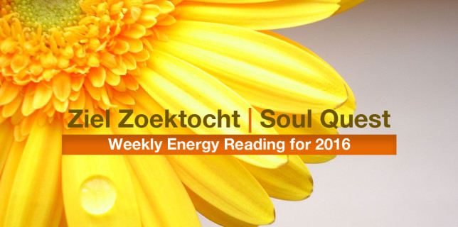 Ziel Zoektocht | Soul Quest | Weekly Energy Reading